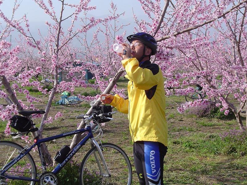 04お花見ラン 036